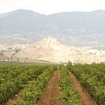 Tres iniciativas de La Rioja concurrirán al I Concurso nacional Mayores con Iniciativa
